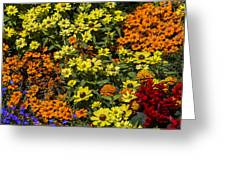 Garden Colors Greeting Card