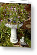 Garden Flowering Pot Greeting Card