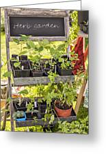 Garden Herb Nursery Greeting Card