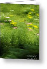 Garden Impressions Greeting Card