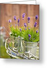 Garden Lavender Greeting Card