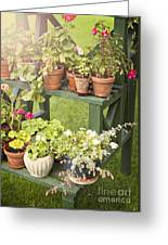 Garden Life Greeting Card