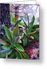 Garden Of Agave Greeting Card