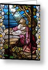 Garden Of Gethsemane Greeting Card