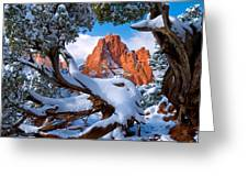 Garden Of The Gods Framed By Juniper Trees Greeting Card