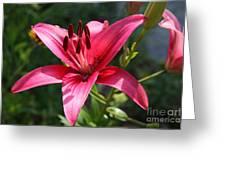 Garden Queen Greeting Card