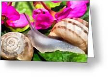 Garden Snails Greeting Card