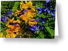 Garden Splash Greeting Card