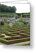 Garden Symmetry Chateau Villandry  Greeting Card