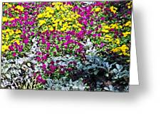 Garden Variety Greeting Card