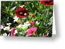 Garden Variety Greeting Card