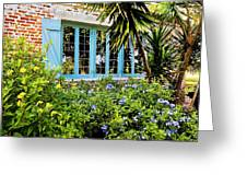 Garden Window Db Greeting Card