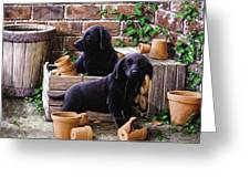 Gardeners Corner Greeting Card by John Silver