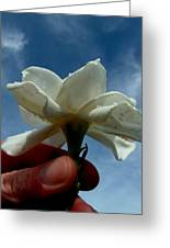 Gardenia For You My Dear Greeting Card