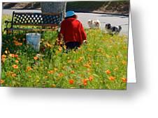 Gardening Distractions In Park Sierra-california Greeting Card