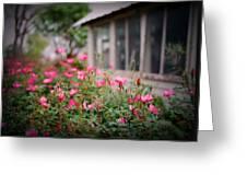 Gardens Of Pink Greeting Card