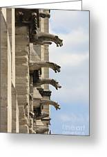 Gargoyles Of Notre Dame Greeting Card