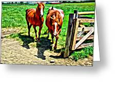 Gate Horse Greeting Card