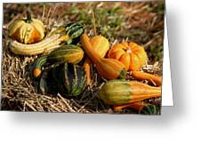 Gather The Harvest Greeting Card