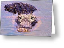 Gator Looking  Greeting Card