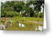 Gazebo Trees Lake And Rock Garden In Singapore Chinese Gardens Greeting Card