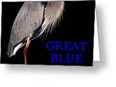 Gbh Bird Educational Work A Greeting Card