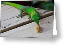 Gecko 2 Greeting Card