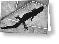Gecko Shadow Greeting Card