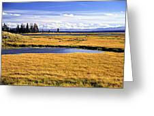 Geese At Yellowstone Lake Greeting Card