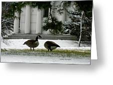 Geese In Snow Greeting Card