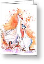 Geese In Spanish Winter Greeting Card