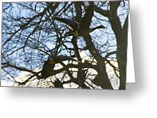 Geese In Twlight Sky Greeting Card