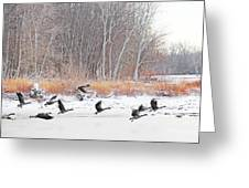 Geese Over Maumee River Greeting Card
