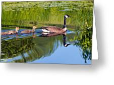 Geese Ripples Greeting Card by Shell Ette