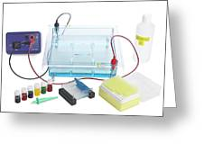 Gel Electrophoresis Equipment Greeting Card