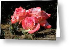 Gemini Tea Rose Greeting Card