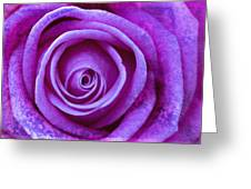 Gentle Folds Greeting Card
