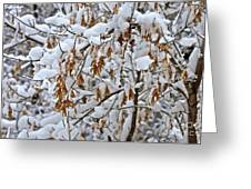 Gentle Snow Fall Greeting Card
