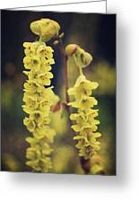 Gently Falling Greeting Card by Laurie Search