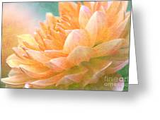 Gently Textured Dahlia  Greeting Card