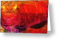 Geometric Kitty Greeting Card