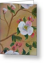 Georgia Flowers - Apple Blossoms- Stretched Greeting Card