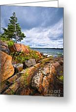 Georgian Bay Greeting Card
