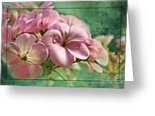 Geranium Blossoms Photoart Greeting Card