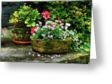 Geraniums And Lavender Flowers On Stone Steps Greeting Card