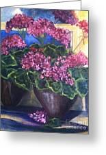 Geraniums Blooming Greeting Card