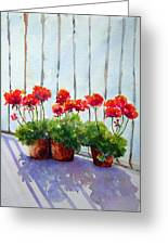 Geraniums On My Balcony Greeting Card