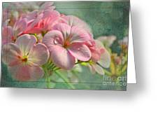 Geraniums With Texture Greeting Card