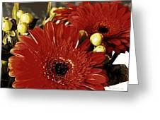 Gerber Berry Baby Greeting Card