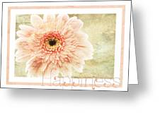 Gerber Daisy Happiness 1 Greeting Card
